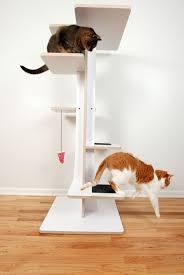 shelf modern cat tree  choose ideal and modern cat tree
