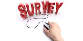 Image result for online survey