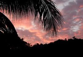 「熱帯夜画像」の画像検索結果
