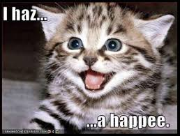 Memes Vault Lol Cat Memes via Relatably.com