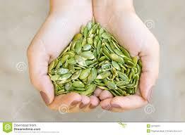 Resultado de imagen para manos con semillas