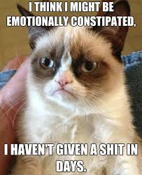 Grumpy-Cat-Meme-101.jpg via Relatably.com