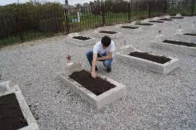 Картинки по запросу братские могилы хасавюрт