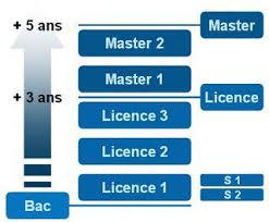 """Résultat de recherche d'images pour """"organigramme licence master doctorat"""""""