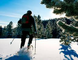 The Best Pants for <b>Winter Hiking</b> • Gear Patrol