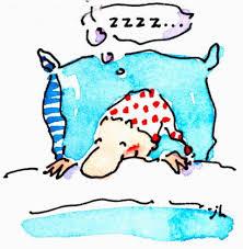 Duerme al menos 7 horas diarias