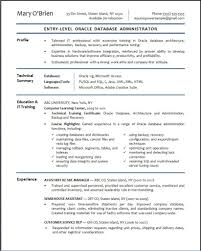 profile essay examples oracle dba resume sample x cover letter gallery of sql server developer resume sample