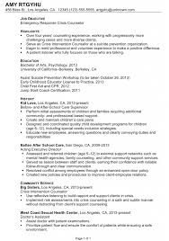 resume professional profile help examples entry level professional resume professional profile help examples entry level