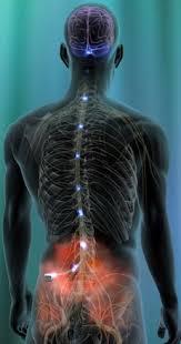 Bildresultat för fibromyalgia back pain