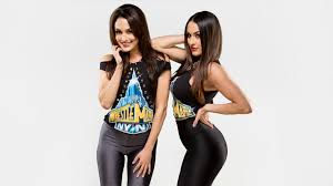 the bella twins have decided what their next career move will be don t worry wwe fans the bella twins have big plans that you