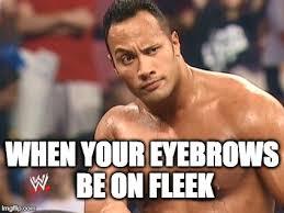 Eyebrows on Fleek - Imgflip via Relatably.com