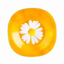 <b>Тарелка суповая Luminarc, Carine</b> Paquerette Melon, 22 см ...