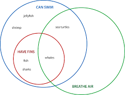higher order thinking with venn diagrams  set venn diagram