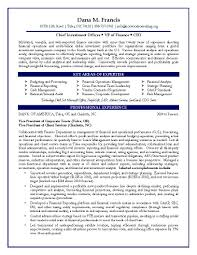 cfo sample resume template cfo sample resume