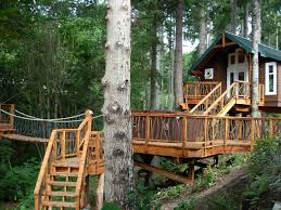 Always Had a Soft Spot in Your Heart for Tree Houses  Check These    houseplangallery com