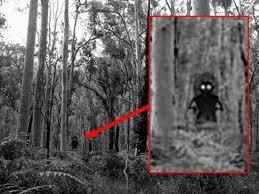 「Flatwoods Monster」の画像検索結果