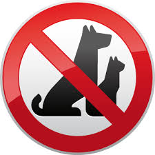 Image result for no pets sign
