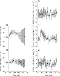 dynamic stabilization of rapid hexapedal locomotion journal of figure