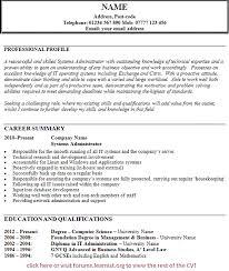 UK Job Vacancies  IT Systems Administrator CV Example  CV Plaza
