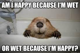 Memes Vault Because I'm Happy Memes via Relatably.com
