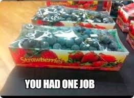 The Very Best of You Had One Job Meme - Snappy Pixels via Relatably.com