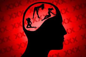 مغز و پورنوگرافی