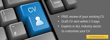 Best Rated CV Writers in UK   Best Resume Services A M Cleaning