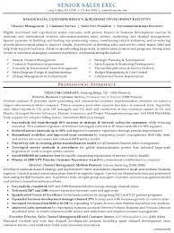 Breakupus Outstanding Resume Sample Senior Sales Executive Resume