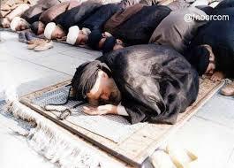 Hasil gambar untuk syiah iran
