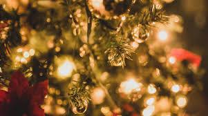 「クリスマス イルミ フリー」の画像検索結果