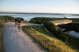 Self-Guided Scenic Bike Ride to Coastal Wineries from Napier ...