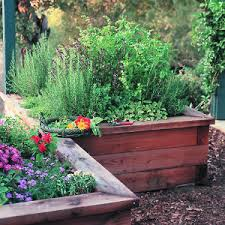 Small Picture Garden Design Garden Design with Herb Garden with English Garden