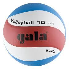 <b>Мяч волейбольный GALA Training</b> Heavy 10, размер 5 — купить в ...