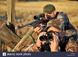 two deer hunters rifle and binoculars john day oregon usa stock photo two deer hunters rifle and binoculars john day oregon usa