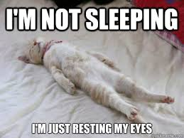 I'm not sleeping I'm just resting my eyes - Misc - quickmeme via Relatably.com