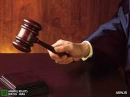 Image result for قاضی