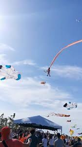<b>Girl</b>, 3, survives wild skyride caught in <b>tail</b> of giant kite | Reuters