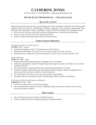 entry level medical device sales resume sales sales lewesmr sample resume sle sample healthcare sales resume