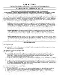 Executive Managing Director Resume WorkBloom Free Resume Templates