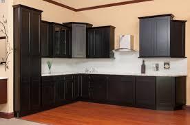 Hampton Bay Kitchen Cabinets Kitchen Hampton Bay Kitchen Cabinets Throughout Elegant Hampton