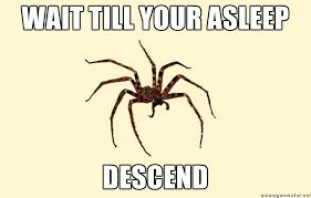 Spider Meme - Sharenator via Relatably.com