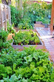 Small Picture Raised Bed Garden Design Knoll Landscape Design