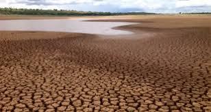 Resultado de imagem para seca no nordeste