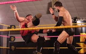 Image result for samoa joe finn balor