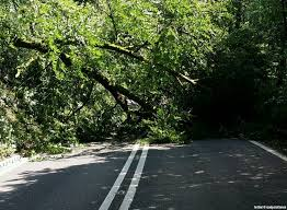 News - Massive power cuts as the storms hit Cornwall - Pirate FM