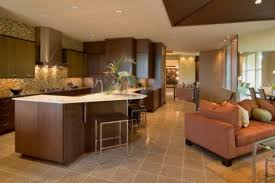 Open Concept Kitchen  carldrogo comopen concept kitchen and living room decorating ideas open kitchen living room decorating ideas