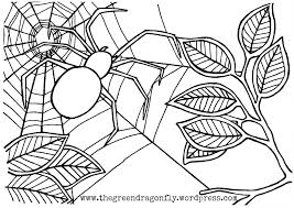 Small Picture Spider web coloring sheet The Green Dragonfly
