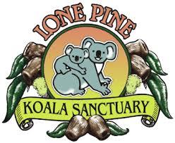 Lone Pine <b>Koala</b> Sanctuary