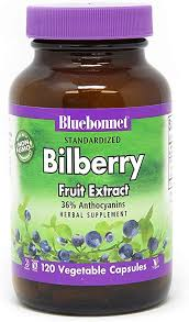 BlueBonnet Bilberry Fruit Extract Supplement, 120 ... - Amazon.com