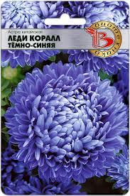 Астра китайская Леди Коралл Тёмно-Синяя <b>семена</b>, описание ...